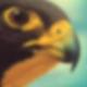 Phalcon: Phalcon mit Vagrant und Virtualbox auf OS X